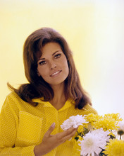 This is an image of Prints & Posters of Raquel Welch 201586