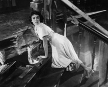 This is an image of Prints & Posters of Elizabeth Taylor 104108