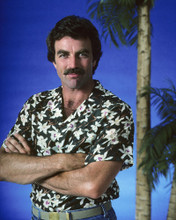 This is an image of Prints & Posters of Tom Selleck 201695