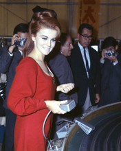 This is an image of Prints & Posters of Ann-Margret 201899