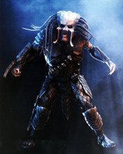 This is an image of Prints & Posters of Predator 201830