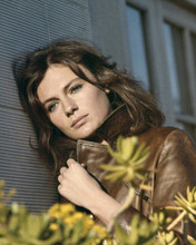 This is an image of Prints & Posters of Jacqueline Bisset 202142