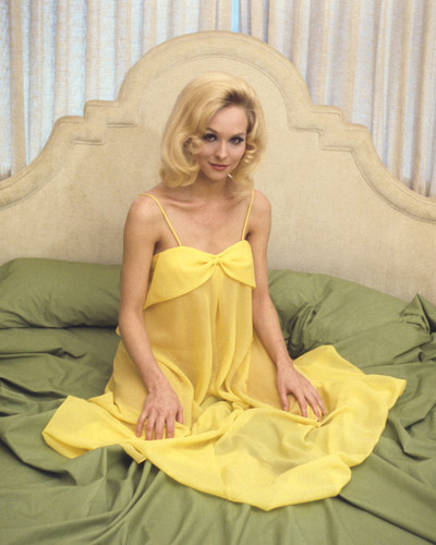 This is an image of Prints & Posters of Diane McBain 202179
