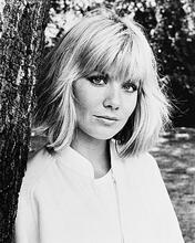 This is an image of 1766 Glynis Barber Photograph & Poster