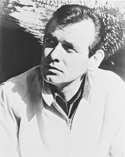 This is an image of 12232 David Janssen Photograph & Poster