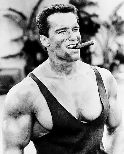 This is an image of 12477 Arnold Schwarzenegger Photograph & Poster