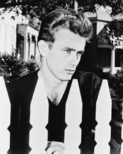 This is an image of 13205 James Dean Photograph & Poster