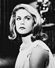 This is an image of 18095 Elizabeth Montgomery Photograph & Poster
