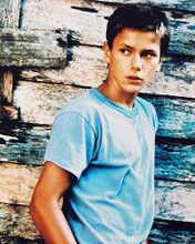 This is an image of 21453 River Phoenix Photograph & Poster