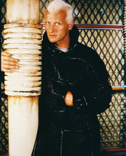 This is an image of 23323 Rutger Hauer Photograph & Poster