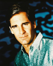 This is an image of 27364 Scott Bakula Photograph & Poster