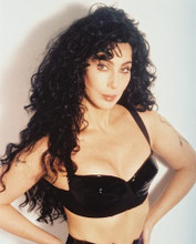 This is an image of 27645 Cher Photograph & Poster