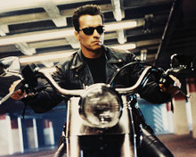 This is an image of 29079 Arnold Schwarzenegger Photograph & Poster