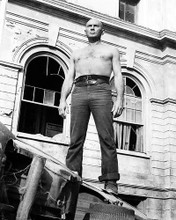 This is an image of 100391 Yul Brynner Photograph & Poster