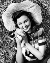 This is an image of Photograph & Poster of Jean Simmons 100774