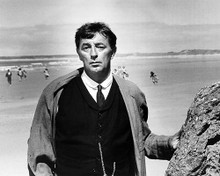 This is an image of Photograph & Poster of Robert Mitchum 100778