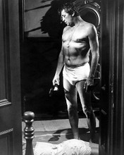 This is an image of Photograph & Poster of Robert Mitchum 100795