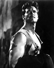 This is an image of Photograph & Poster of Steve Reeves 100871