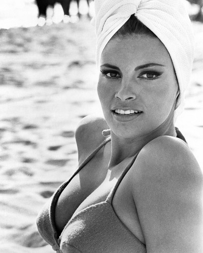 This is an image of Photograph & Poster of Raquel Welch 101761