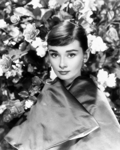 This is an image of Photograph & Poster of Audrey Hepburn 101865