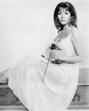 This is an image of Photograph & Poster of Ingrid Pitt 101900