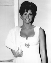 This is an image of Photograph & Poster of Raquel Welch 101906