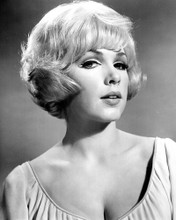 This is an image of Photograph & Poster of Stella Stevens 101956