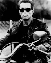 This is an image of Photograph & Poster of Arnold Schwarzenegger 102069