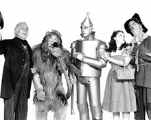 This is an image of Photograph & Poster of The Wizard of Oz 102106