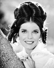 This is an image of Photograph & Poster of Samantha Eggar 102125