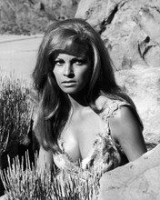 This is an image of Photograph & Poster of Raquel Welch 102164