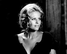 This is an image of Photograph & Poster of Claudia Cardinale 102275