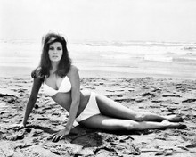 This is an image of Photograph & Poster of Raquel Welch 102370