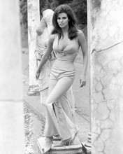 This is an image of Photograph & Poster of Raquel Welch 102372