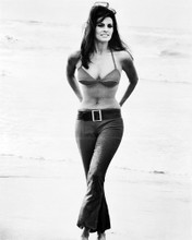 This is an image of Photograph & Poster of Raquel Welch 102398