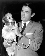 This is an image of Photograph & Poster of Gregory Peck 102452