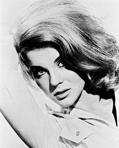 This is an image of 160005 Ann-Margret Photograph & Poster
