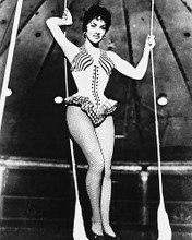This is an image of 160255 Gina Lollobrigida Photograph & Poster