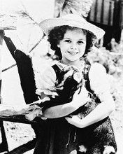 This is an image of 163269 Shirley Temple Photograph & Poster