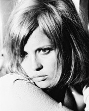 This is an image of 163585 Faye Dunaway Photograph & Poster