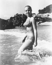 This is an image of 165228 Sue Lyon Photograph & Poster