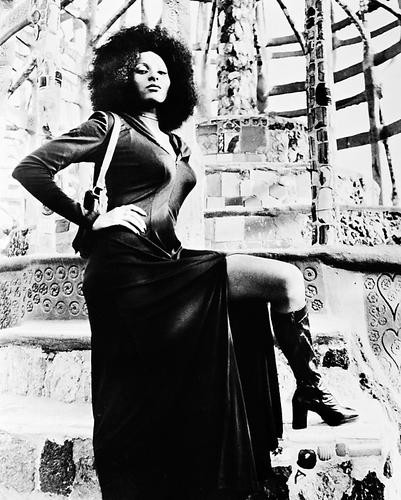 This is an image of 167310 Pam Grier Photograph & Poster