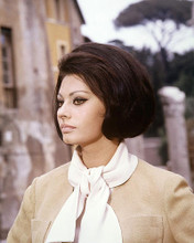 This is an image of 280984 Sophia Loren Photograph & Poster