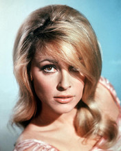 This is an image of 281025 Sharon Tate Photograph & Poster