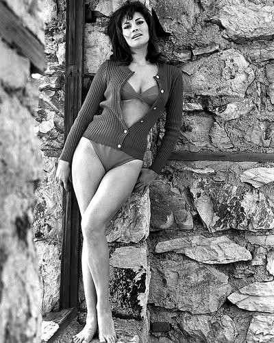 This is an image of 190703 Raquel Welch Photograph & Poster