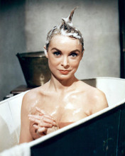This is an image of 281043 Janet Leigh Photograph & Poster