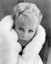 This is an image of 190834 Elke Sommer Photograph & Poster
