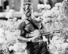 This is an image of 191372 Arnold Schwarzenegger Photograph & Poster