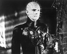 This is an image of 191564 Hellraiser Photograph & Poster