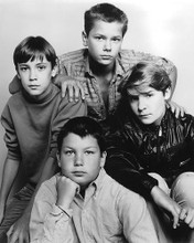 This is an image of 191867 Stand by Me Photograph & Poster